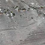 Foto de Parco Comunale delle Incisioni Rupestri di Luine