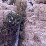 Фотография Bokek River