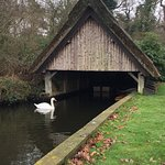 Photo de Fairhaven Woodland and Water Garden