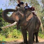 Photo of Chang Thai Thappraya Safari