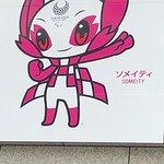 東京都庁展望室の写真