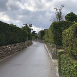 Ảnh về Chiran Samurai Residence Garden