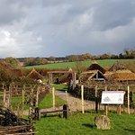 Фотография Butser Ancient Farm