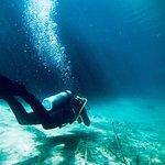 Photo of Agua Clara Diving Tulum