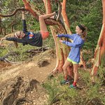 Climb and Arbutus Tree on the Top of Gowlland Tod Hike - be a kid again!