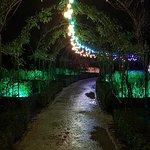 Brodsworth Hall and Gardens