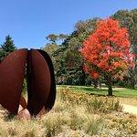 Sale Botanic Gardens Foto