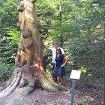 Arboretum Exotenwald