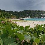 Foto di White Bay