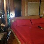 Feather Nest Inn Photo