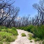 Foto de Booderee National Park