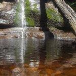Фотография Snug Falls