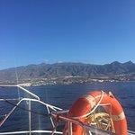 Fotografia de MAXICAT catamaran