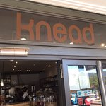 Knead Bakery Image