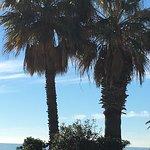 صورة فوتوغرافية لـ La Paella