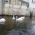Photo of Prague Venice Boat Trip