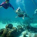 SNUBA Turks and Caicosの写真