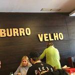Fotografia de Burro Velho