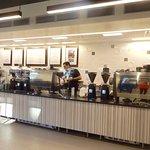 Koffi Palm springs resmi