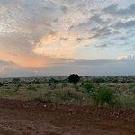 Bilde fra Malik Safari
