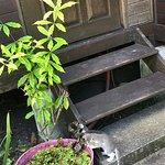 Photo de Lilikoi Garden Café