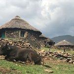 Village at Makhupung