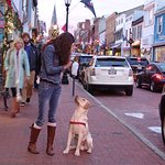 Annapolis at Christmastime
