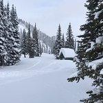 Φωτογραφία: Kicking Horse Mountain Resort