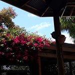 Foto de Harbour View Hotel Bar and Restaurant