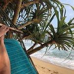 Foto de Coco Beach Talpe Restaurant & Beach Club