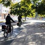 Elecmove Electric Bikes Foto