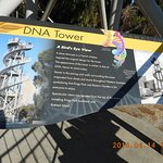 Photo of DNA Tower Climb