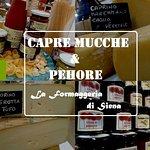 Billede af Capre Mucche & Pehore