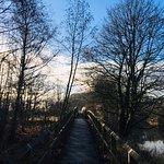 Photo de Durham Riverside Walk