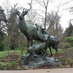Photo de Jardin des Plantes