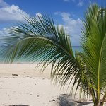 Playa Larga – snímka