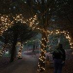 Billede af Basildon Park