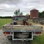 Geraldine Farm Toursの写真