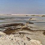 Bilde fra Purple Island - Al Khor Island