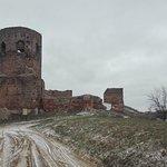 Zamek w Kole