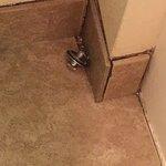 The plug from the bathtub