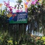 Photo of Jurong Bird Park