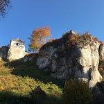 Photo of Ojcow Castle