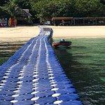 Foto de Coral Island