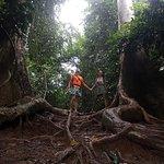 proacházka džunglí Taman Negara je zážitek