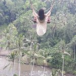Bilde fra Bali Esa Driver