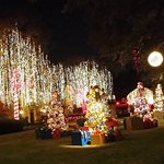 Christmas lightseeing on Dallas by Chocolate tour