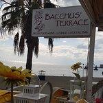 Фотография Bacchus' Terrace