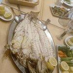 Photo of Fishalida