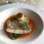 صورة فوتوغرافية لـ Vivo Restaurant